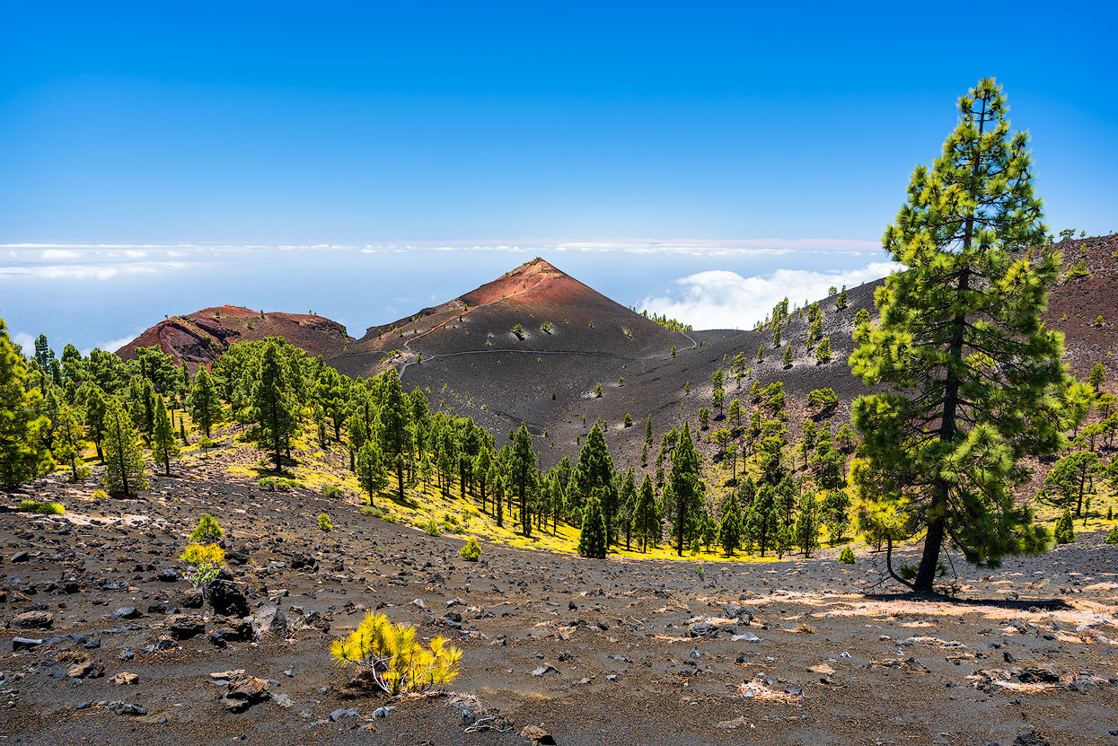Hike along fantastic volcanic landscapes in the south of La Palma